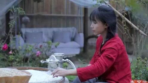网红李子柒彻底火了!央视评价李子柒:14岁辍学,28岁火出国门