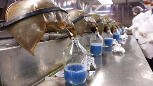 世界上5种昂贵液体,最贵每升6000万,其中一种就在你体内