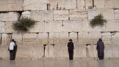 全世界最伤心的墙,游客看了就哭,网友:这么神奇么?