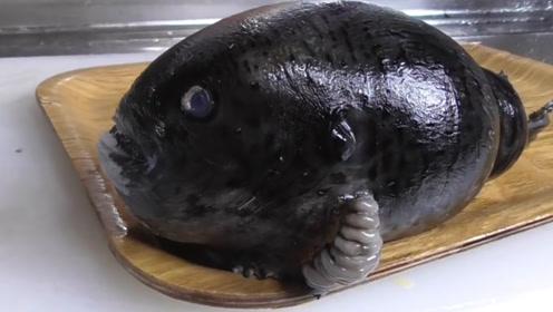 日本人吃河豚成家常便饭,黑乎乎的一条就煮成汤,出锅配着啤酒吃