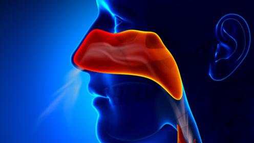 鼻炎反复发作,会变成鼻咽癌吗?提醒:有这几种症状,才需担心