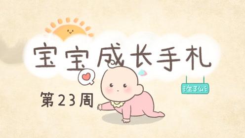 宝宝23周,最容易患的疾病是感冒,多为鼻塞流涕、厌乳等症状