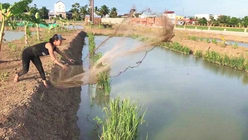 村边无人打理的水坑,表姐撒下一大网,拉上一看,收获一篮子罗非鱼