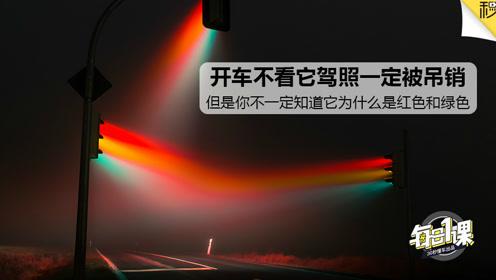 开车不看它驾照一定被吊销 但你不一定知道它为什么是红色和绿色