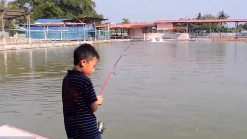 小男孩的鱼竿都拉弯了,果然钓上的鱼和他差不多