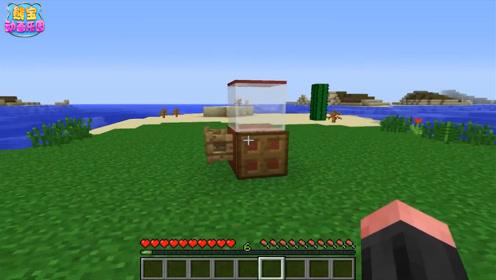 我的世界吃货世界 如何制造一台爆米花机