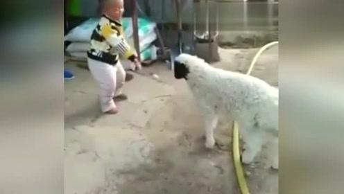 这孩子战斗力真是强!在气势上就赢了