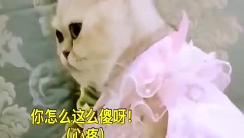 刘二豆卖水瓶给瓜子买礼物,瓜子感动不已,豆妈不乐意了