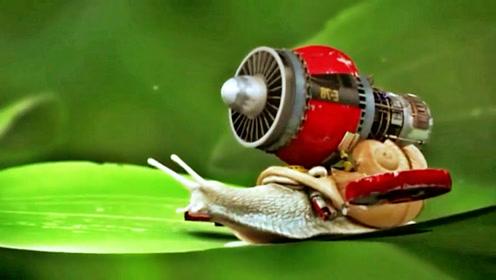 不搞笑是不可能的,现在的机器人也越来越逗了!