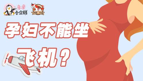 孕妇不能坐飞机?2分钟快速get孕妈乘机安全攻略
