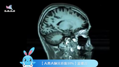 《好兔为什么》05:人类的大脑真的只开发了10%么?