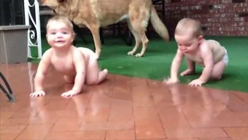 肉乎乎的双胞胎宝宝纷纷爬出露台淋雨,玩雨水,玩得好嗨!