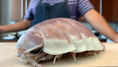 来自深海的神秘虱虫,日本人都敢炒着吃,剥开以后都是白色液体,真是恶心