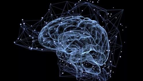 人类大脑最多开发5%?科学家声称,多动脑才是关键!