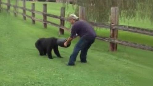 """路边发现""""奇怪生物"""" 竟是头被卡桶里的小黑熊"""