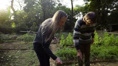 巴西夫妇帮荒漠起死回生,耕耘20年,万亩森林复苏,应有尽有