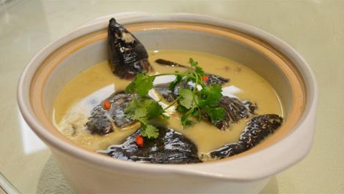 人们常吃甲鱼,为什么却从不吃乌龟?难道是乌龟不能食用吗?