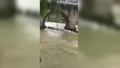 龙舟撞桥墩后侧翻船员被瞬间冲散
