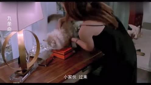 美女估计是太喜欢猫,抱起猫咪就往床上放,直接就睡着了