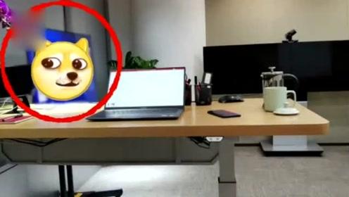 进军新领域!荣耀总裁赵明疑似披露华为首台电视,可能8月份上市