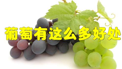 多吃葡萄,竟然有这么多的好处,但是这类人最好不要吃