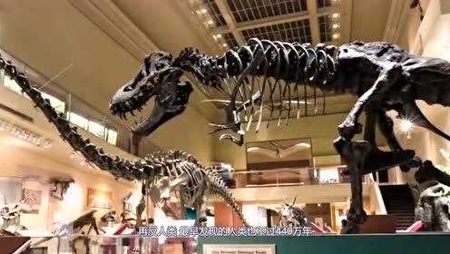 恐龙统治了地球1亿多年,为何没有进化出高级智慧?专家说明真相