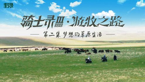 骑士录Ⅲ 在一万三千亩的草场上,骑士们驯野马,谁弱爆?