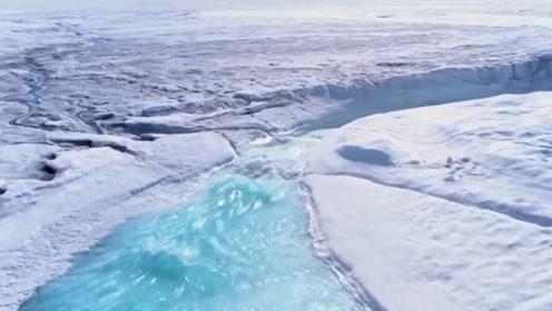 南极冰川融化后,发现了不该出现的东西,科学家:人类要警惕了!