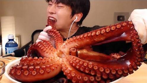 """大胃王吃播吃十几斤重的""""大海怪"""",没有一副好的牙口真吃不动"""