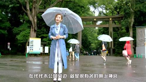 紫阳花-日本梅雨季的一道清新色彩!在新宿附近也可以看哦