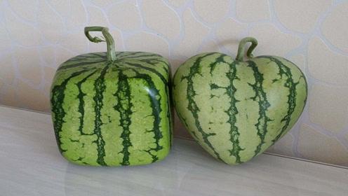 西瓜这样切,不沾手不流汁,吃不到一粒西瓜籽,之前都切错了
