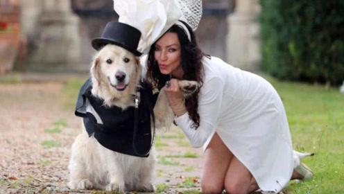 英国嫩模相亲200次无果,心灰意冷嫁爱犬,直言婚后生活很棒!