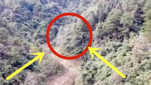 """小伙在大山里发现""""怪人"""",用无人机飞近一看,吓得不敢说话!"""
