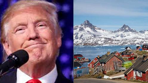 欲购格陵兰岛遭拒,川普推迟访问丹麦:期待以后重新讨论