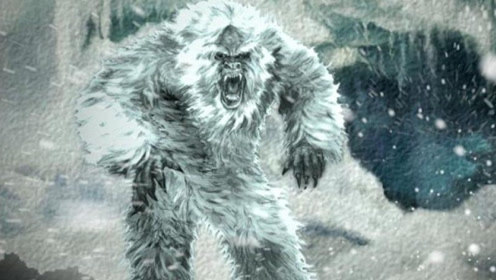 西藏地区物种之谜——喜马拉雅雪人存在?传说居然成真!