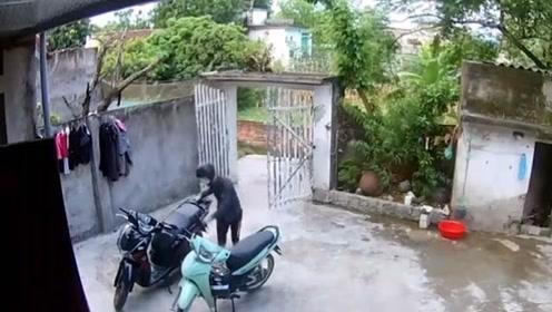 稍作休息贼便溜进院子偷走了摩托车 网友:求看门狗心里阴影面积