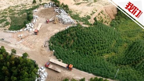 漳州市回应漳浦县矿区破坏生态环境问题:3个月复垦复绿到位