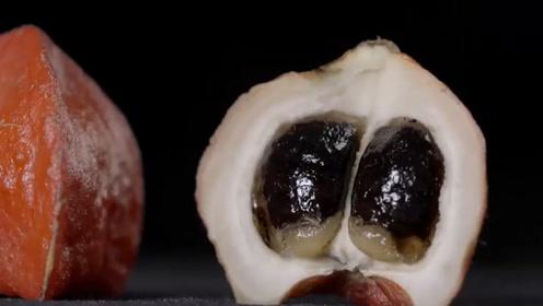 """世界上最""""甜""""的水果,甜度是白糖的300倍,至今无人敢吃它"""