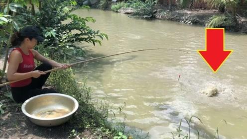 美女发现水中不对劲,略施小计开展行动,二十秒后收获满满一盆!