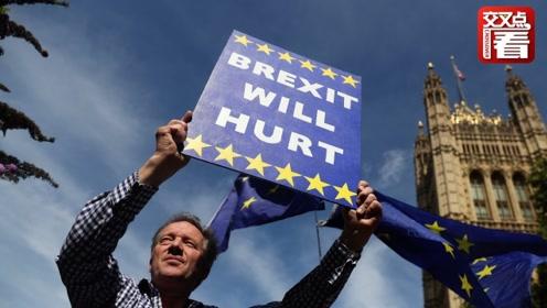 亮丽的风景线!英国人抗议约翰逊强制议会休会:当我们傻啊!