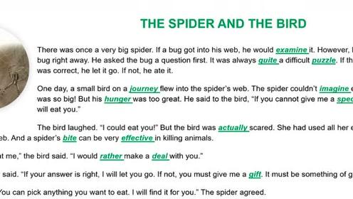 第一册开始复习单词!4000英语单词第二十七章,莫名的友谊