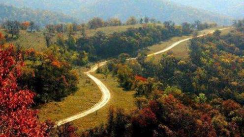 当年秦始皇修建的公路,为啥两千多年也不长草?专家解释了真相