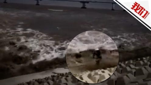 男子岸边拍摄被大潮卷走 奇迹生还仅受皮外伤