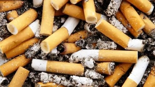 烟头里面有黄金?外国男子回收废弃烟头,一年纯赚40万