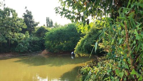 妹子钓鱼被放鸽子,在池塘边看到什么?她这么开心!