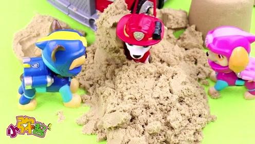 汪汪队总部出现三个不明沙堆  阿奇好奇挖开发现被困的毛毛佩奇