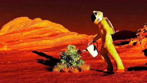 人类什么时候才能在火星上种出农作物?荷兰科学家给出了答案!