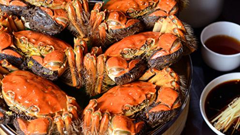 今年阳澄湖螃蟹规格高,涨价1成!