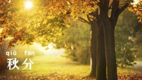 今日秋分,秋分节气养生法