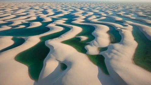 """世界上最""""奇葩""""沙漠,没有黄沙还遍地湖泊,鱼虾成群水比沙子多"""